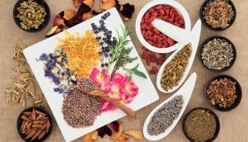 Phytotherapy: How To Treat With Plants?